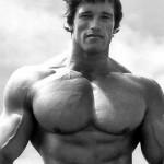 Como recuperar a tu ex pareja imitando a Schwarzenegger.